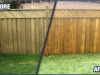 Pressure Treated Fencing